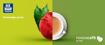 Como fazer com que produtores de café mudem o jeito de pensar a cultura do plantio?
