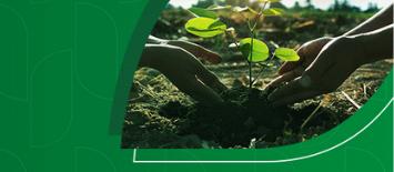 """AgroEAD – Uma parceria e21, Agrolink e I-Uma – lança um novo curso: """"Organização Patrimonial, Sucessória e Tributária no Agronegócio"""""""